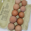 eggs-crate of 10