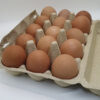eggs-crate of 15